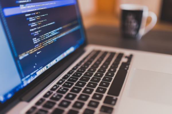 programador carreira de futuro